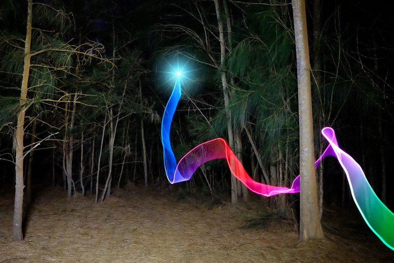 Rainbow Ribbon in Forest