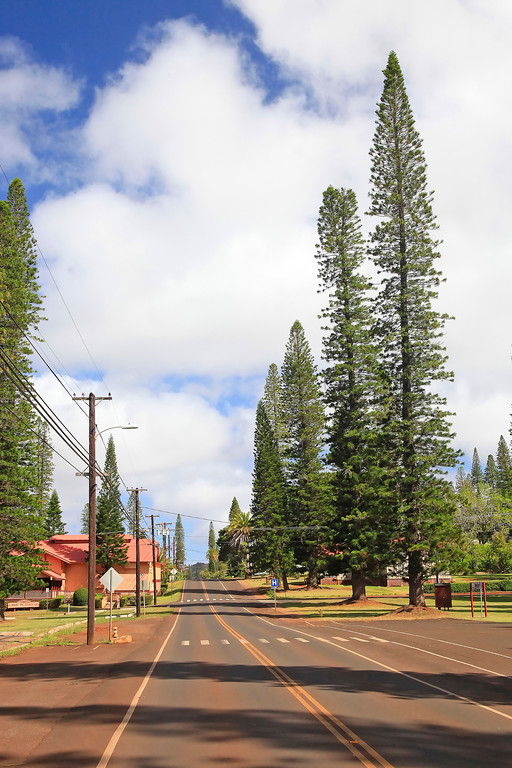 Lanai Avenue - Lana'i, Hawaii