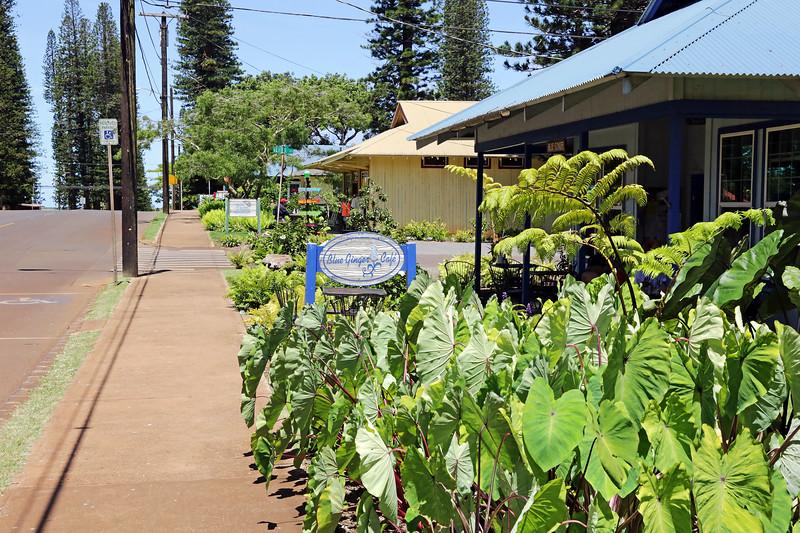 Blue Ginger - Lana'i, Hawaii