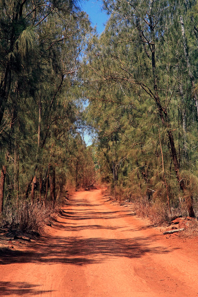 Road to Keahiakawelo (Garden of the Gods) - Lana'i, Hawaii