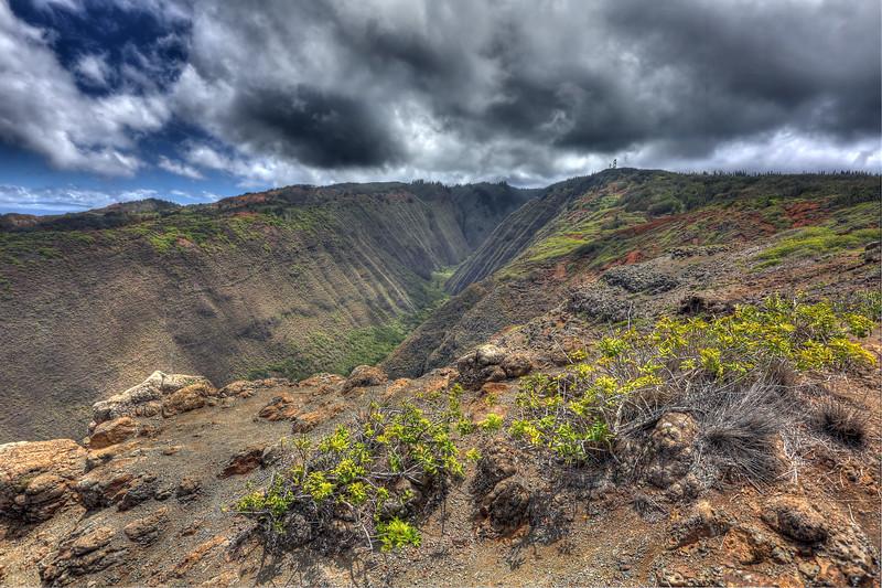 Maunalei Gulch - Lana'i, Hawaii