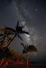 Milky Way -  Beach View