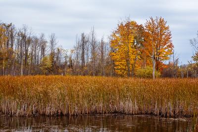 Lake Eugenia #1