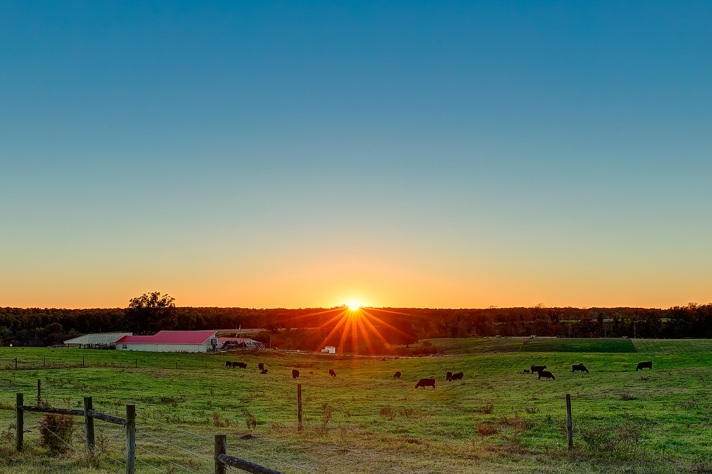 Sunset over NCSU Farm