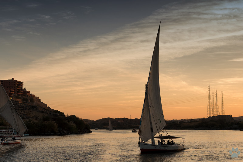 Nile river cruises were very good, but felucca rides to the nubian village were awesome!
