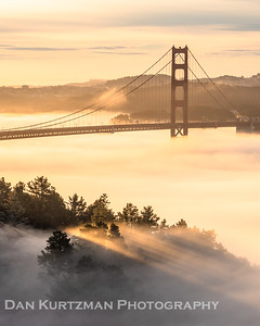 Morning Fog and Light Rays at the Golden Gate