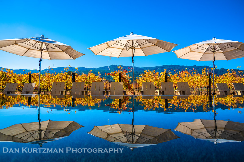 Reflections of Fall in Napa Wine Country