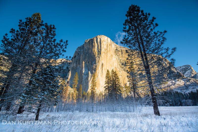 El Capitan Meadow Winter Morning