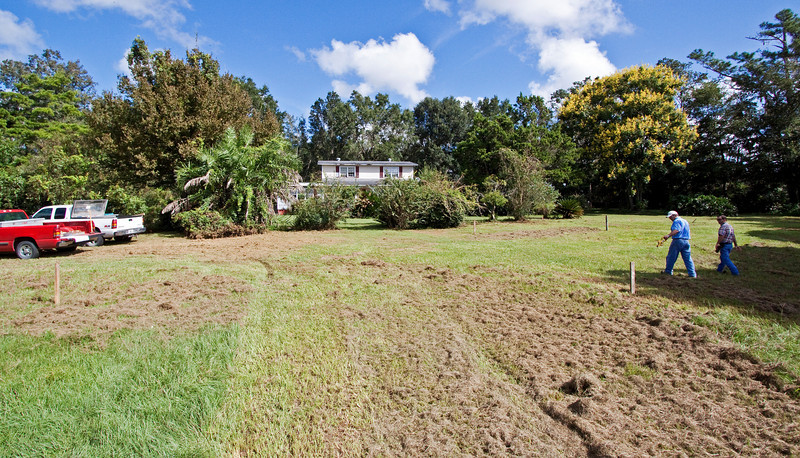 Week 1<br /> 9/26/09<br /> The stakes are set for the corners of the new house and carport, by builder Scott Rosenboom and Phil, who has the bulldozer and loader.<br /> <br /> We will not miss the reclinata palm clump (at 3 o'clock) but are very sad that the big hop hornbeam behind it will have to go. It was just too big to move.