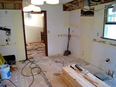 Home Remodeling 2009