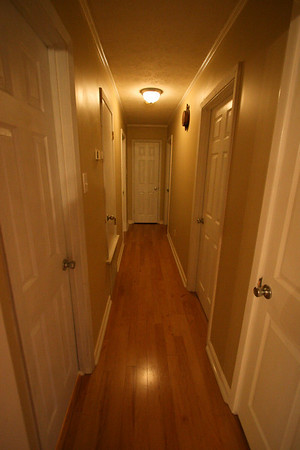 Hallway to back of home. All brand new 6 panel interior doors, brush nickle hardware and light fixture