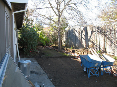 The backyard has been dug up. A couple of Pyracantha bushes will be planted against the fence to replace the one that died a few years ago. We hope we can lure the Mockingbird back who lived in it, or one of his successors.