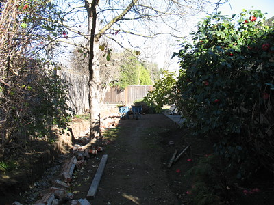Another view of the backyard.