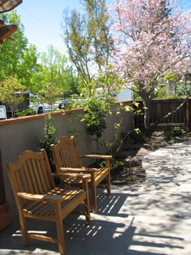 The pair of chairs to match the bench. See the dogwood in bloom with its pretty pink flowers?
