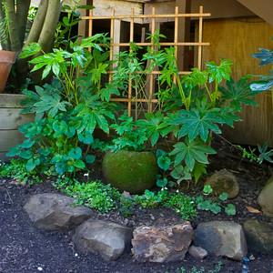 Green Garden Arrangement