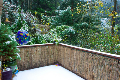 Snow in the Oakland Hills!