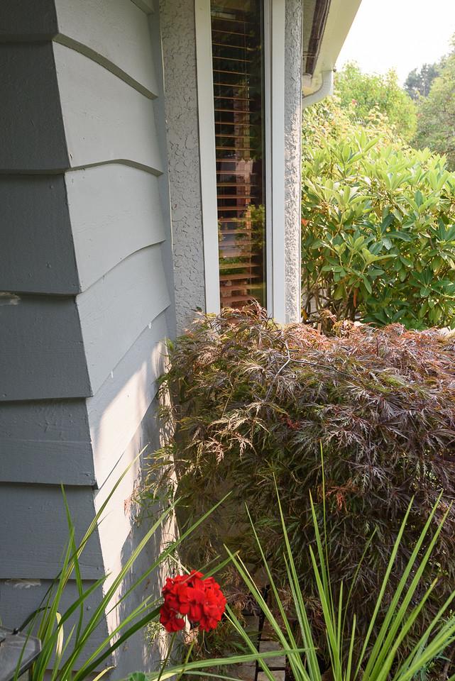 Detail - front east of door behind plant