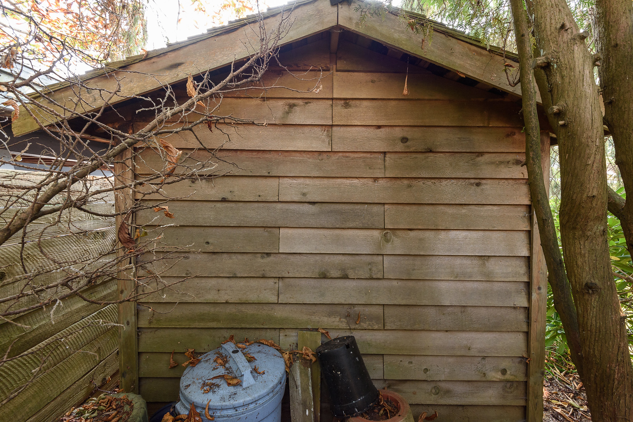 Shed - back -unpainted