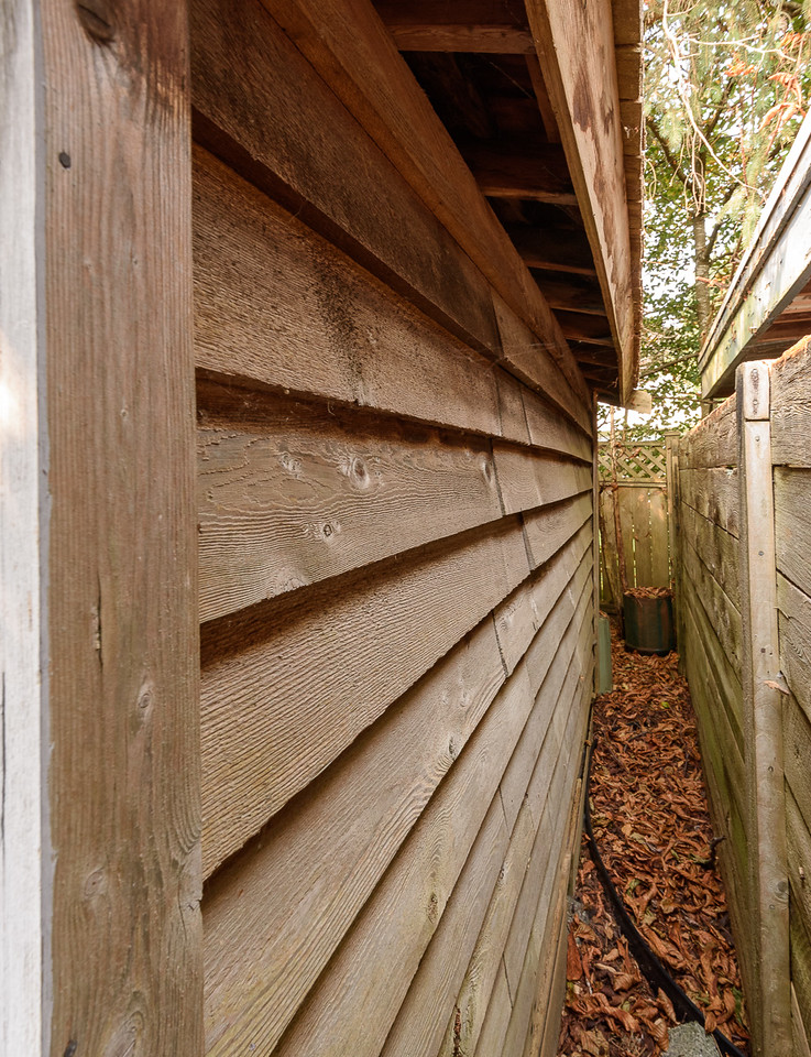 Shed - from front beside fence - unpainted