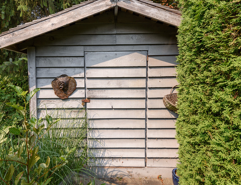 DShed - Front