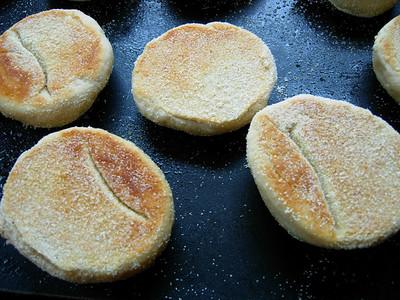 2010-02-06 Homemade English muffins