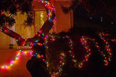 Corner house, next street over. I like the snake of lights on the bushes.