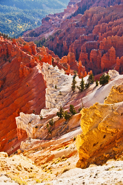 Amphitheater  View -  Cedar Breaks NM