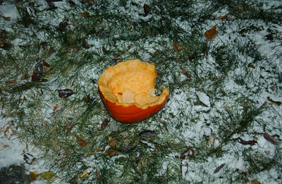 MP-RemainsOfThePumpkin001