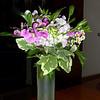 flowers2 6-18-11