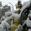 Snow10 10-29-11