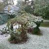 Snow13 10-29-11