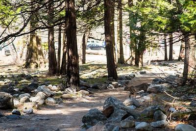 Yosemite   March 2017