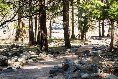 Yosemite | March 2017