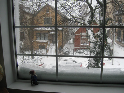The Gnome surveys the conditions outside