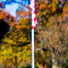 Title: Legion Park, Abstract<br /> Date: November 2010<br /> Legion Park, taken using a plastic lens, which gives the off-focus look of the picture.