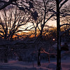 Title: Sunset Over the Snow<br /> Date: February 2010<br /> Sunset along Carlyle Street after the first of two snowstorms in February 2010.
