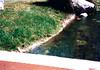 20110124-condo_1992-0214