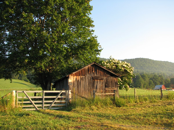 COUNTRYSIDE CHARM<br /> This old storage shed adds charm to this farm in North Carolina!