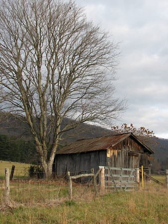 RUSTIC CHARM<br /> The weathered wood on this shed brings a rustic charm to this scene.
