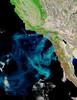 California A2003299 1840 721 500m