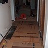 hardwood is out, temporary floor covering to keep glue from tracking through the house