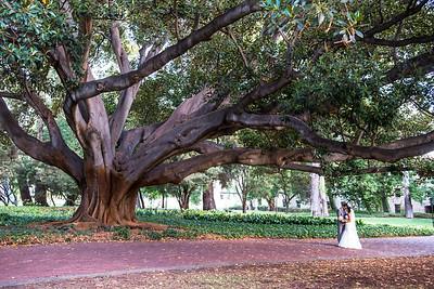 UWA, wedding Perth