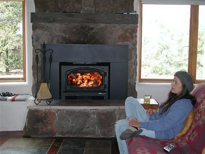 Fireplace Insert 2