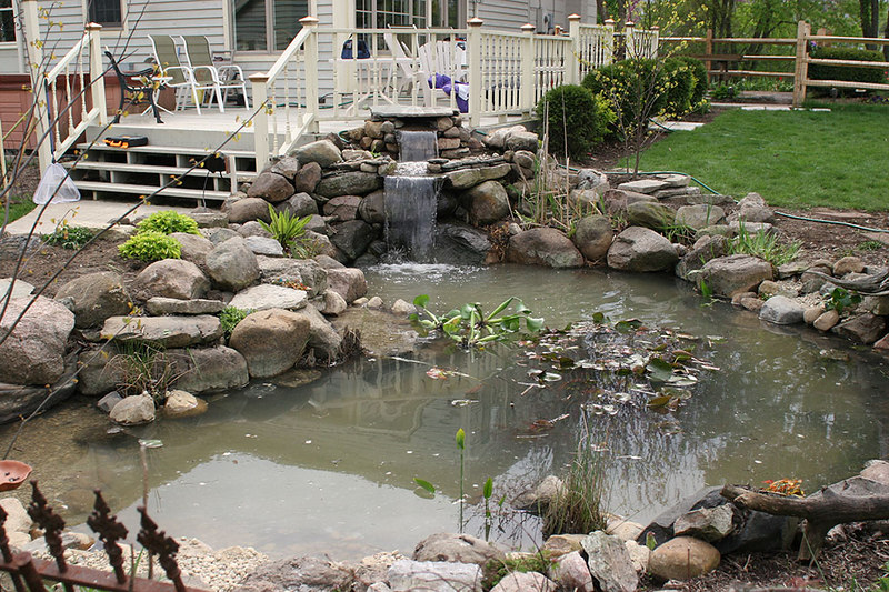 refilling the pond