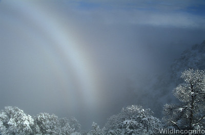 Snowbow Grand Canyon