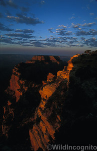 Cape Royal Sunrise Grand Canyon