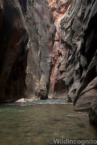The Narrows Zion National Park