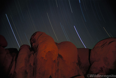 Falling Stars and Campfire Joshua Tree National Park