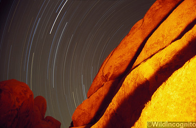Star streaks and glowing rocks Joshua Tree National Park