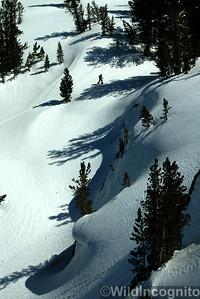 Backcountry Skier Sierra Nevada